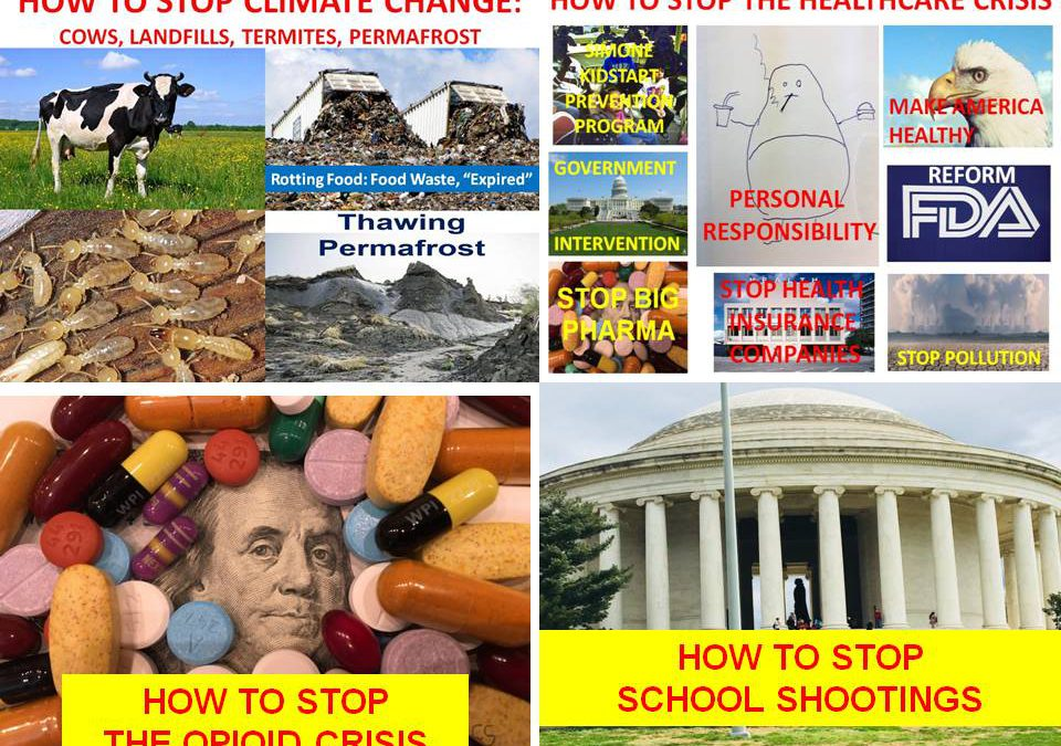 DR SIMONE HOW TO STOP CRISIS: CLIMATE CHANGE, HEALTH CARE, OPIOID, SCHOOL SHOOTINGS, SUICIDE